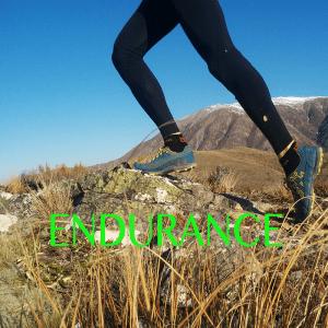 Endurance Range
