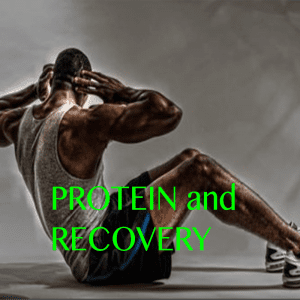 Protein and Muscle Range